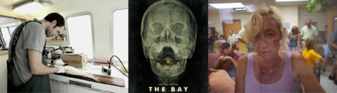 The Bay - Banner