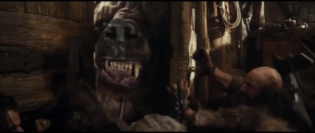 The hobbit the desolation of smaug beorn