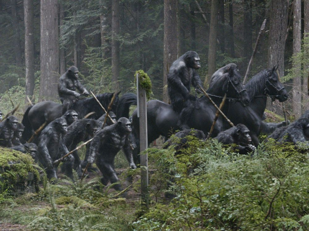 Dawn of the Planet of the Apes (2014) Review (6/6)