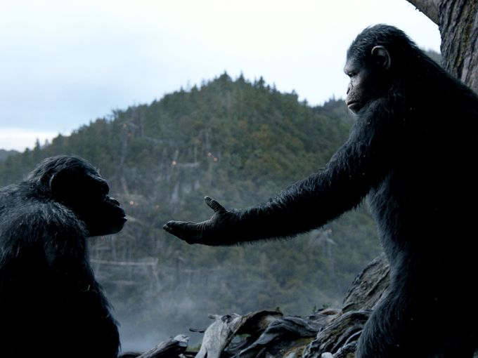 Dawn of the Planet of the Apes (2014) Review (4/6)