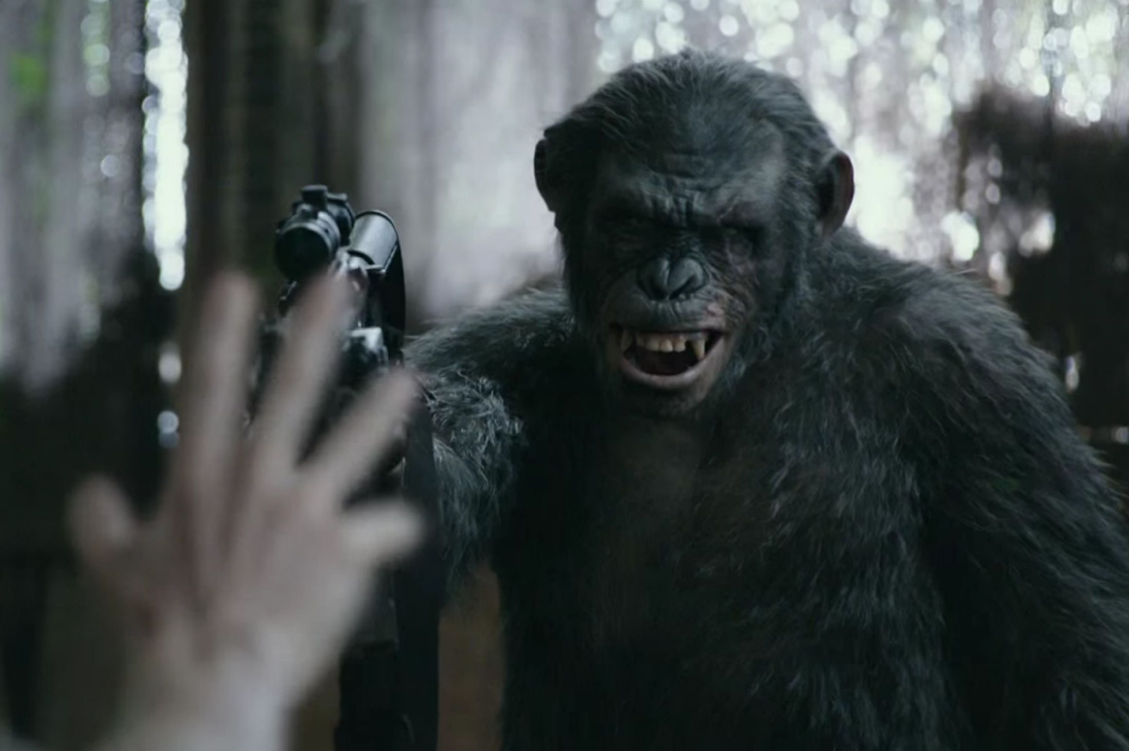 Dawn of the Planet of the Apes (2014) Review | Tim's Film ...